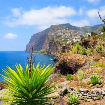 Tropiniai augalai Madeiroje.